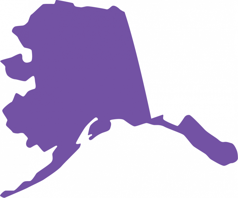 Naming your LLC in Alaska